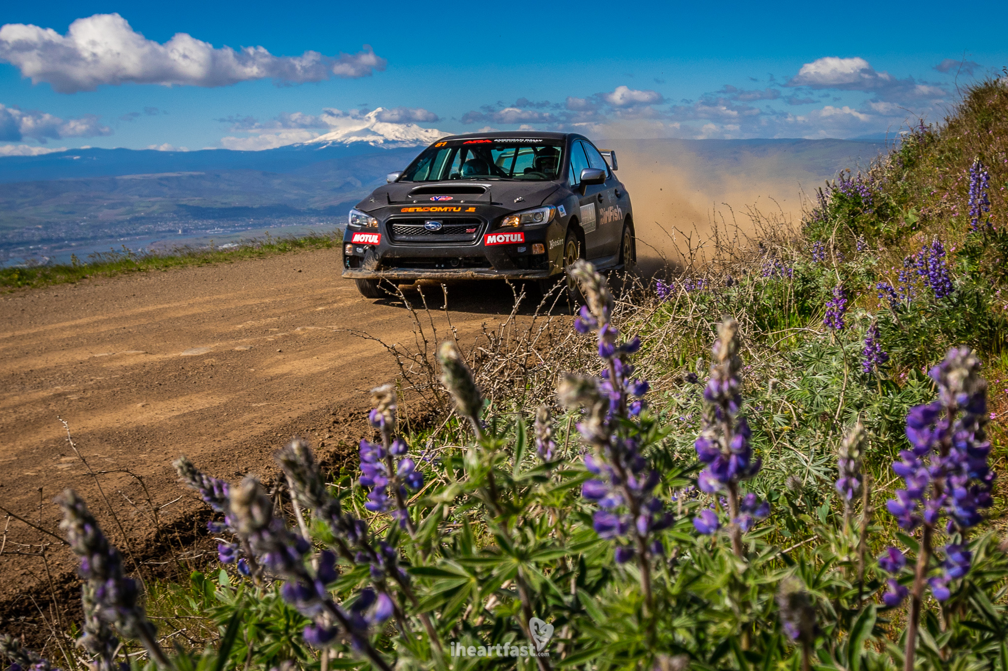 Wildflowers and mountains and rally cars.